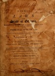 1799 Watkins Digest of Statutes by Robert Watkins and George Watkins